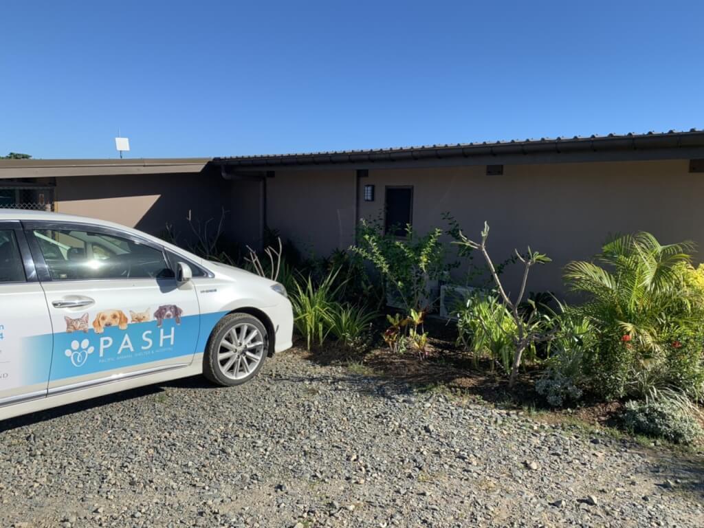 【Ratu Navula】PASHでのボランティア体験談